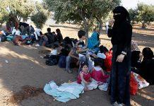 Български камион с 14 имигранти заловен в Гърция